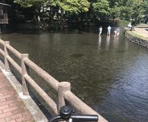 静岡県内の風景写真❁10枚あります お散歩風景のその時間、気温、天気、場所の一点物限定写真です