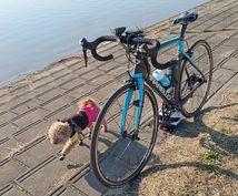 自転車(スポーツバイク)選び、パーツの取り替えなんでもご相談ください
