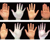 掌紋医学の手相診断で身体の弱い所をお伝えします 将来的疾患リスク、健康運を専門的な手相鑑定で簡単チェック