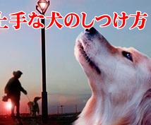 【電子書籍】 効果的な犬のしつけ方
