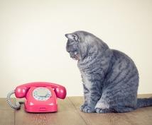 貴方、貴女のお話し聞きます 秘密厳守、話してすっきりしませんか?
