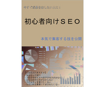 ウェブサイト集客のためのSEOの基礎を解説します 会社や個人サービスのサイトのアクセスアップの方法を知る!