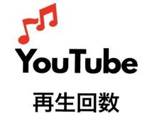 迅速★あなたのYoutube動画を宣伝します 高品質+動画の再生回数が1000回以上増えるまで宣伝します!
