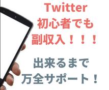 Twitterで副収入を得る現実的な方法を教えます Twitter超初心者さん向けです。サポート付き。
