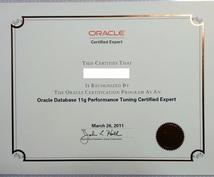 データベースのSQL作成、チューニングを支援します 各DBベンダーの上位資格保持者がSQL作成のお悩みに答えます