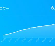 2ヶ月でフォロワーを+5000にした方法を教えます 実績あり!アイコン、投稿内容、運用方法から収益化までを添削!