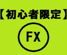 FXの基本が学べます ネットに載っている内容から載っていないような内容まで