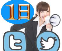ツイッター独占宣伝です。強いアカウントを使って、 あなたが宣伝したいサービスを1日独占宣伝します!
