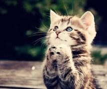 御祈願  一緒に祈ってください