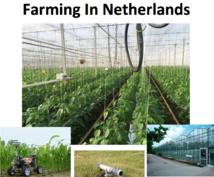 オランダの農業をまとめたミニイーブック(英語)提供します。
