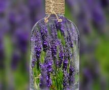 あなたに最適なフラワーエッセンスをご提案します 自然界に咲くお花のパワーをあなたに。体の状態をポジティブに。