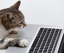 データ入力・サポート業務承ります その雑務、私にやらせてください!