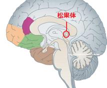松果体活性化!脳と体がスッキリ。リラックスできます やる気が出ない、疲れが取れない時に!脳の活性化で活動的に!