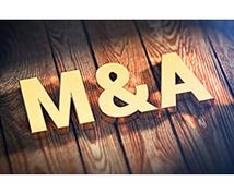 株式・事業譲渡(M&A)契約書のひな形を提供します 自分達でできる株式譲渡、事業譲渡。スモールM&Aには最適。
