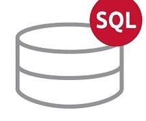 即戦力となるSQLの基礎中の基礎を教えます ≪現役SEが現場ですぐに使えるSQLの基礎を提供します≫
