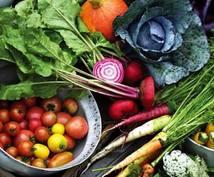 開運へ導きます 【食事×風水】管理栄養士による開運の栄養指導