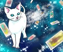 白猫タロットで未来をアドバイスします スッキリ前向きになりたい貴方へ☆恋愛・仕事・趣味などなんでも