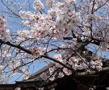 ご縁のある日本の神様をお探しします ☯力になってくれる神様(のメッセージ)でご縁を繋ぎましょう♪