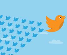 Twitterの外国人フォロワーを増加させます 一か月以内減少補填付 10,000人~外国人フォロワー増加