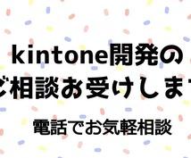 kintone開発のご相談お受けします 電話でお気軽にシステム開発のご相談