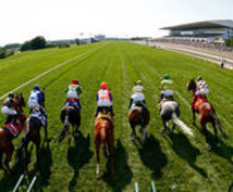 競馬情報提供致します 競馬好きな人 高額配当を狙いたい方大募集します