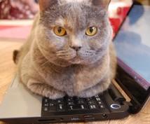 文字起こし。音声・画像をデータにします 会議録や紙媒体の文書をデータ化したい!でも忙しいあなたに。
