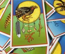 アニマルカードから癒しのメッセージ届けます 今の貴方に必要なことを動物たちからのメッセージでお届けします