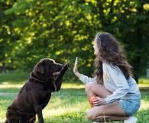 モニター価格でアニマルコミュニケーションします 愛しいペットの気持ちをお伝えします♡亡くなっているペットも可