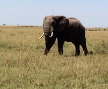 ケニアの旅のコツを教えます!