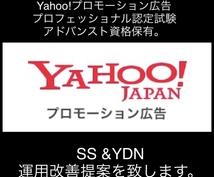 リスティング広告広告の運用改善提案を致します Yahoo!プロモーション広告 認定試験資格保有