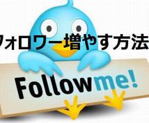 TwitterフォロワーUP正攻(成功)法教えます 【1週間無制限コンサル付き】アクティブフォロワー増やす方法