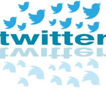 フォロワー14万人以上!宣伝・PRします 【1週間で10回つぶやきます】Twitterで拡散!PR♪