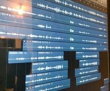 1秒でも早くハイクオリティ仮歌データご用意できます 仮歌経験多数!素早いやり取り、ハイクオリティを目指してます!