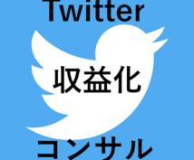 Twitterの収益化!!徹底的にコンサルします Twitterの効率的なマネタイズを徹底サポートいたします!