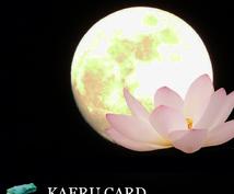 カエルカードであなたの悩みを解決します 闇夜を照らす月が本来のあなたへと導きます❤︎
