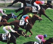 競馬で継続的に勝ちたい人に情報を提供します 一発狙いでは無く、少しづつ勝っていきたい方向け