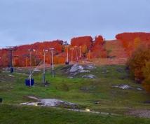 世界一ダイナミックな絶景紅葉ドライブ計画を作ります メープル街道 in Canada☆ナイアガラ⇄ケベックの旅