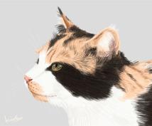 ペットや動物のイラストお描きします 毛の一本に至るまで完全手作業で、写真以上の1枚をお届けします