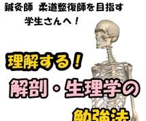 マッサージ師・鍼灸師・柔整師を目指す学生へ 理解する解剖・生理学の勉強のツボをアドバイス