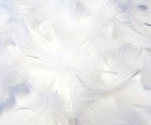 「叡智覚醒・光からのメッセージ」 ~深い叡智、生きるヒントをお求めの方へ~ ‥ミニ鑑定‥