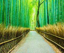 京都観光ライターがオリジナル京都旅行を作ります 日帰りから滞在まで、あなたらしく京都を満喫しませんか?