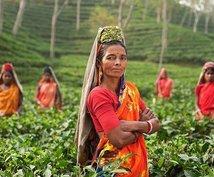 インドに関する産業記事を執筆します ~インドの産業記事をあなたのために作成~
