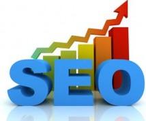 SEO診断します あなたのホームページの検索ランキングアップのお手伝いします。