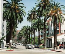 ロサンゼルス 留学情報 生活情報や簡単なVISA関係の相談(法律的な相談を除く)