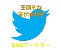 驚異的!Twitter×独自手法で宣伝・拡散します 圧倒的な露出度UPに直結!!/集客/拡散/宣伝/ライティング