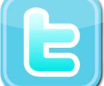 【フォロワー数14000人に拡散】twitterで1日2回 2週間 計28回つぶやきを致します。