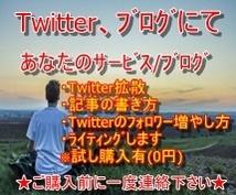 投稿サービス/ブログをツイッター拡散させます ブログ/サービスをTwitterにて拡散