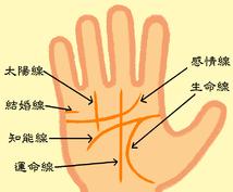 """あなたの手のひらに刻まれた""""手相という名の暗号""""、解読・鑑定いたします。"""