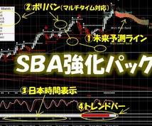sba進化版+強化パックを販売します sba通常版のみお待ちの方で完全版にしたい方はこちら