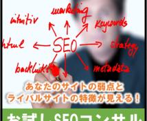 SEOのプロが内部対策・外部対策をアドバイスします 【お試しSEOコンサル】であなたのサイトを改善しませんか?